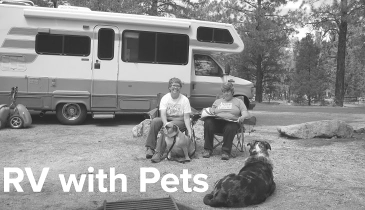 rv with pets